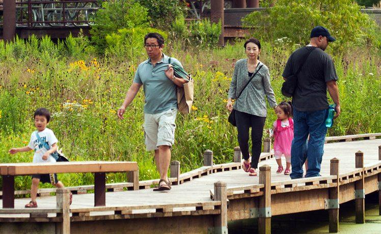 People walking on wooden bridge above swamp
